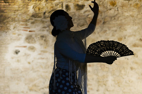 Flamenco débutant