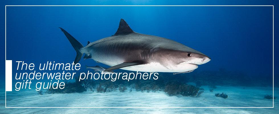 underwater photographer gift guide
