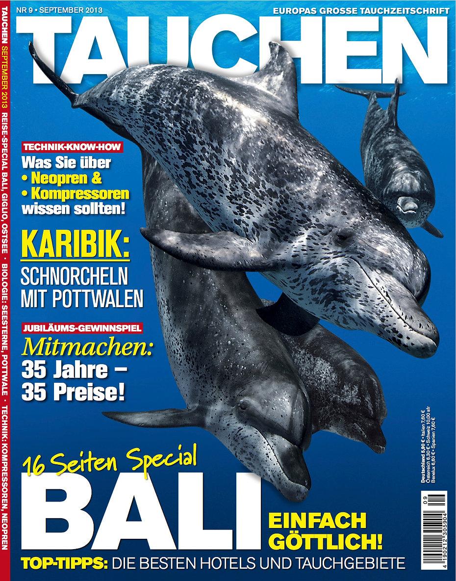 Tauchen_Cover_Markus_davids.jpg