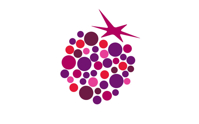 Styleberry logo