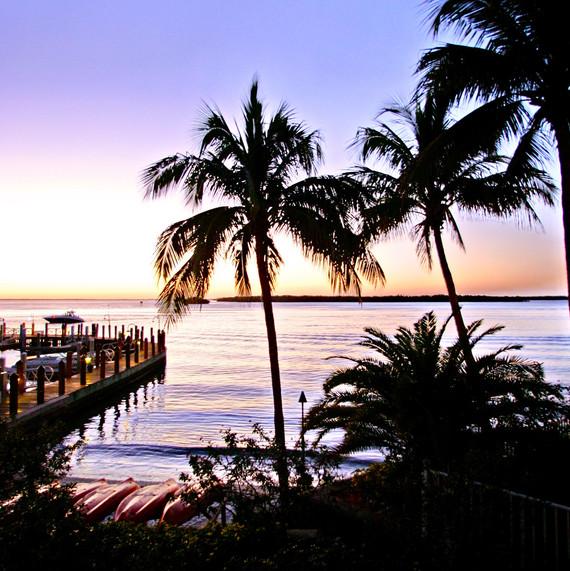 Tropical & Travel