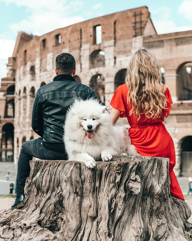 Pets friendly tours to Europe. alivepets.com dog friendly tours. Travel with your pet.