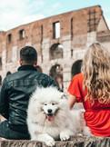 Pet Friendly Journeys Rome Italy