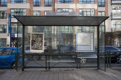 Gourmandise I 84/ 100, xylographie, 70 x 100 cm, Lonchamp, 2019