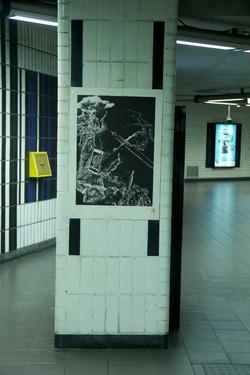 Orgueil 17/100, xylographie, 70 x 100 cm, Albert