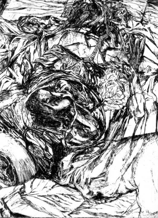 Gestation # 2, etching, 30 x 20 cm, 2014