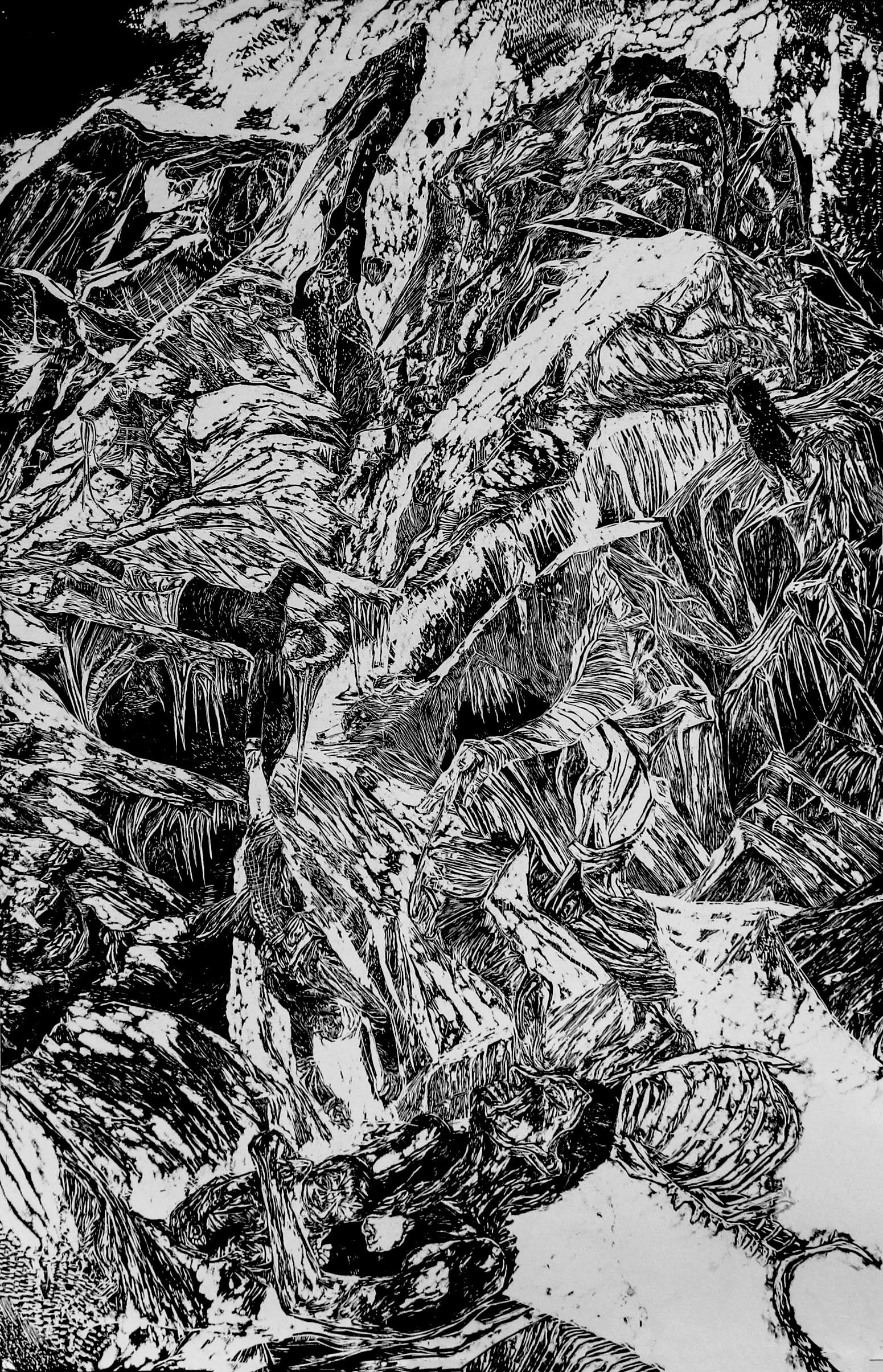 La montagne des rêves évanouis # 4, xylography, 79 x 122 cm
