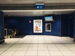Orgueil 23/100, xylographie, 70 x 100 cm, Gare du Luxembourg