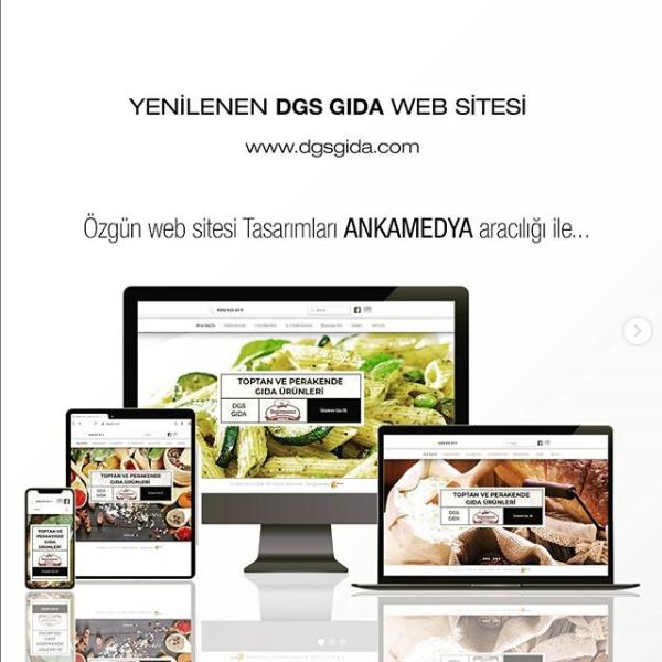 DGS Gıda Web Tasarım