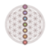 Seed of life logo with chakras.png