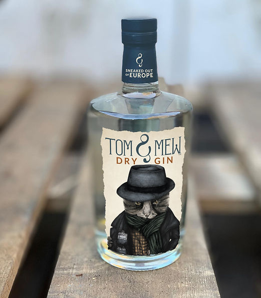 gin_ mock up.jpg