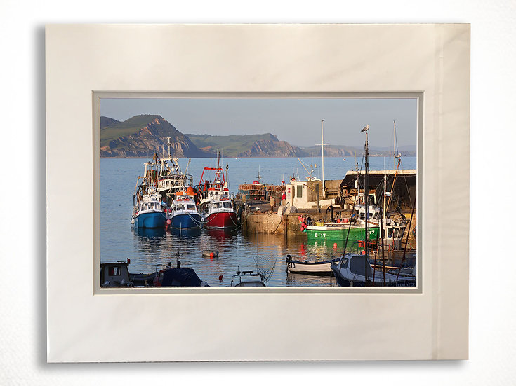 Double Mounted Print - Early Morning Harbour, Lyme Regis.