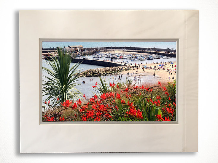 Double Mounted Print - The Cobb Harbour from Langmoor Gardens.