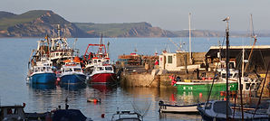 Early Morning Harbour, Lyme Regis.jpg
