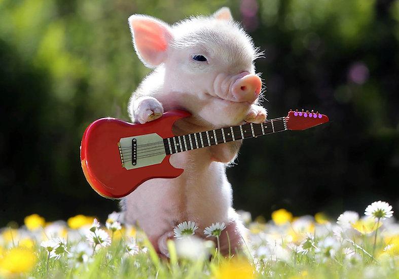 The Solo Guitarist.