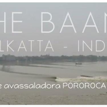 """Canal OFF: Pato """"Jetsurfa"""" a assustadora Pororoca da Índia"""