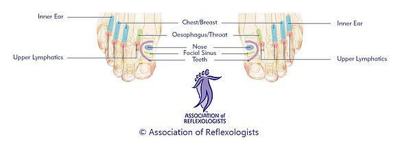 Reflexology Glasgow Milngavie