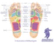 Reflexology foot map, Milngavie, Glasgow