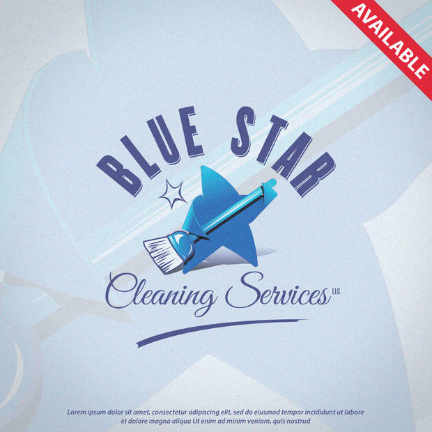 Logo Blue Star Cleaning Services