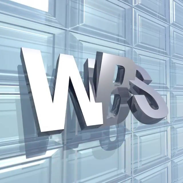 WBS In Space