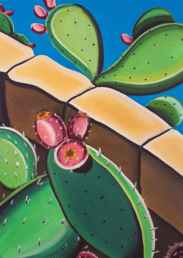 Cactus, 2018