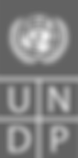 UNDP Log
