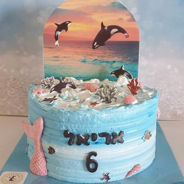 עוגת אורקה אריאל.jpg