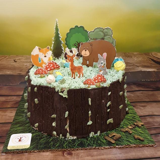 עוגת יער אייל