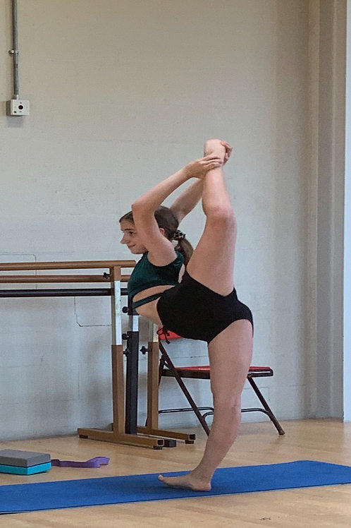 Zoom Private Dance Lesson - 30 mins (one session)