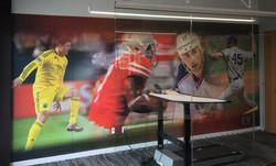 Sports Wall Mural