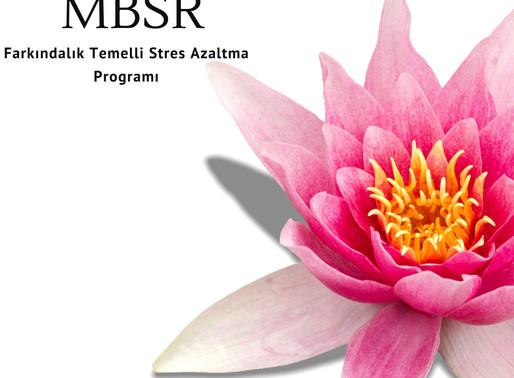 Mayıs 2020 MBSR online programı