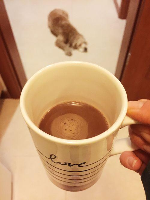 kakaolu süt, sıcak süt, hot chocolate