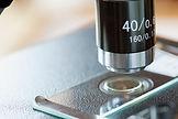 Mikroskop Slayt