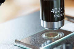 Portaobjetos de microscopio