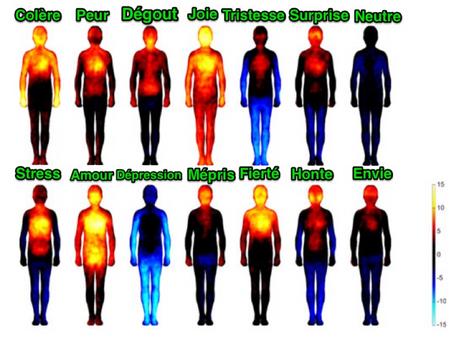 Les émotions ne sont pas que dans la tête, elles sont aussi dans le corps.