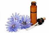 Flacon pour préparation de Fleurs du docteur Bach