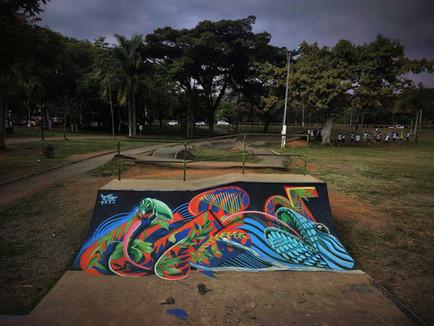 mundoletop streetart skate.jpg