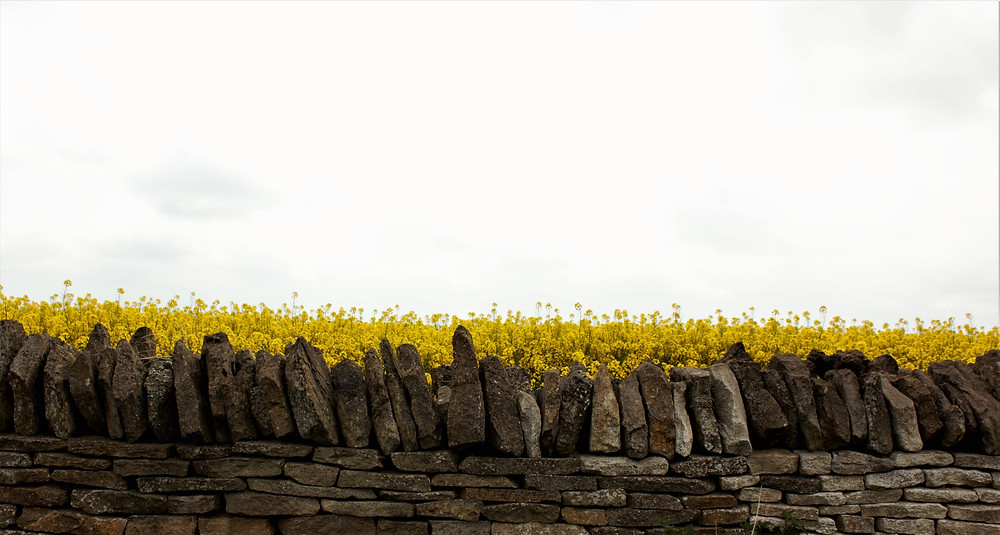 Cotswold dry stone walls
