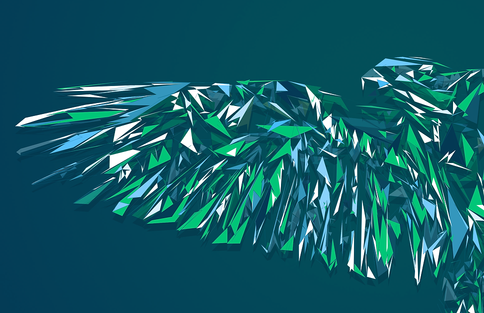 Illustration inspired by the Seattle Seahawks Football Team