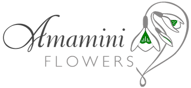 Amamini Flowers - Floral Design Bath