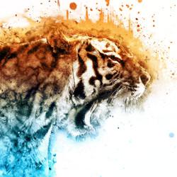 Tiger-in-Jungle6