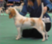 March 2012 Molly Crufts 2.jpeg