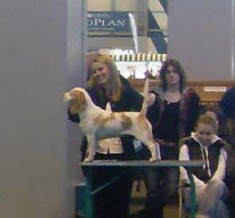 March 2009 Molly Crufts.jpg