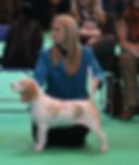 March 2012 Molly Crufts 1.jpeg