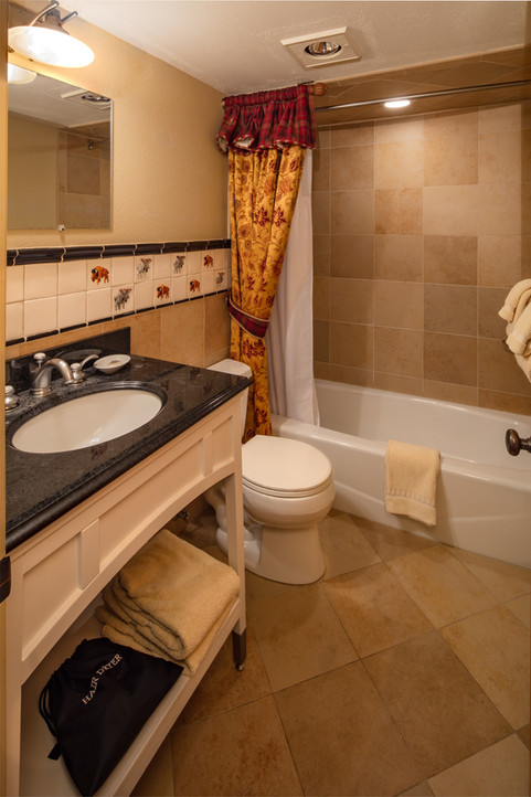 Bathroom DXQ 106 Starwood.jpg