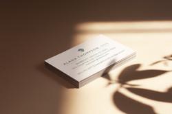 dental business cards2