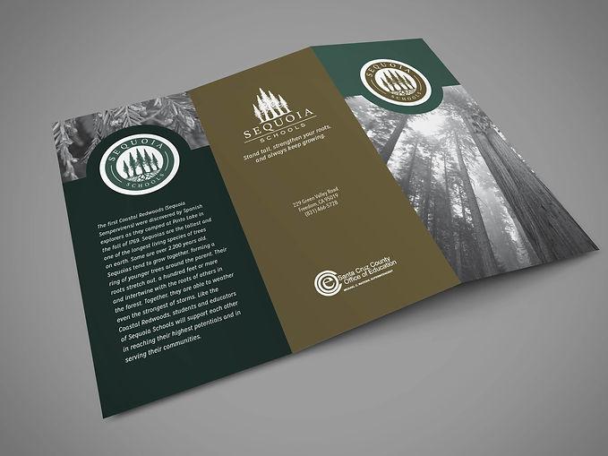 Santa Cruz Graphic Design