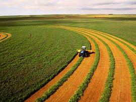 Эффективность распределения агродотаций