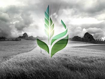 Специальное исследование Ukraine Economic Outlook: «Аграрный фонд» — три сценария будущего
