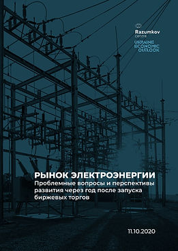UEO_2020_Razumkov_Последнее-10.11-в2-1_p